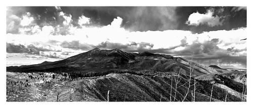 San Francisco Peaks by tylersrose