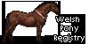 WPR icon by Chistokrovka
