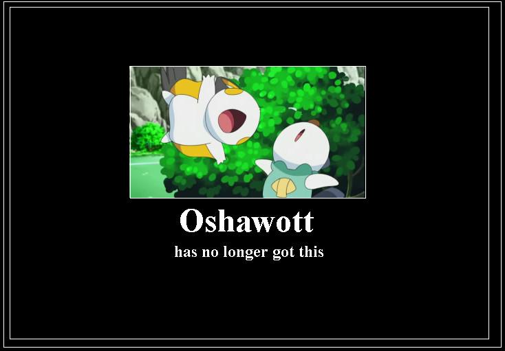 oshawott_meme_2_by_42dannybob d54fdsv oshawott meme 2 by 42dannybob on deviantart