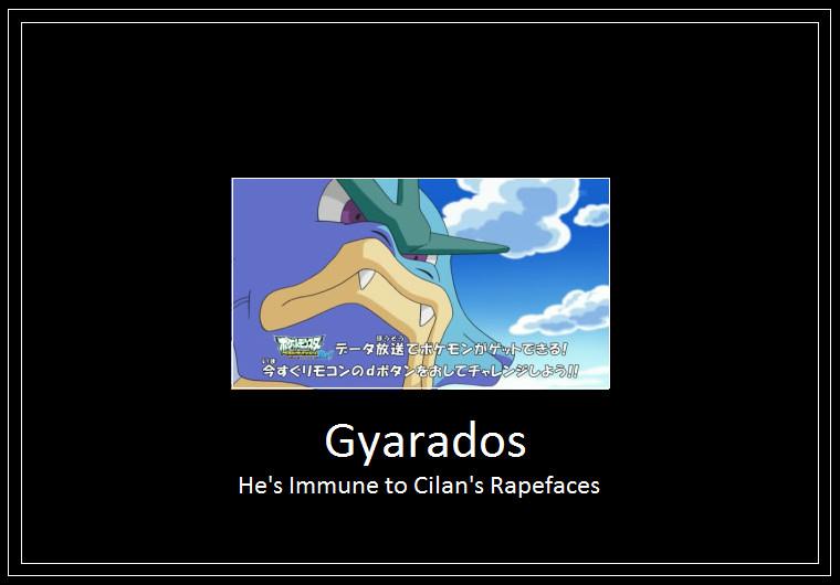 cilan_gyarados_meme_2__sss2__by_42dannybob d6p2xdg cilan gyarados meme 2 (sss2) by 42dannybob on deviantart
