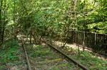 Gleise im Wald! --- abbadonned train track
