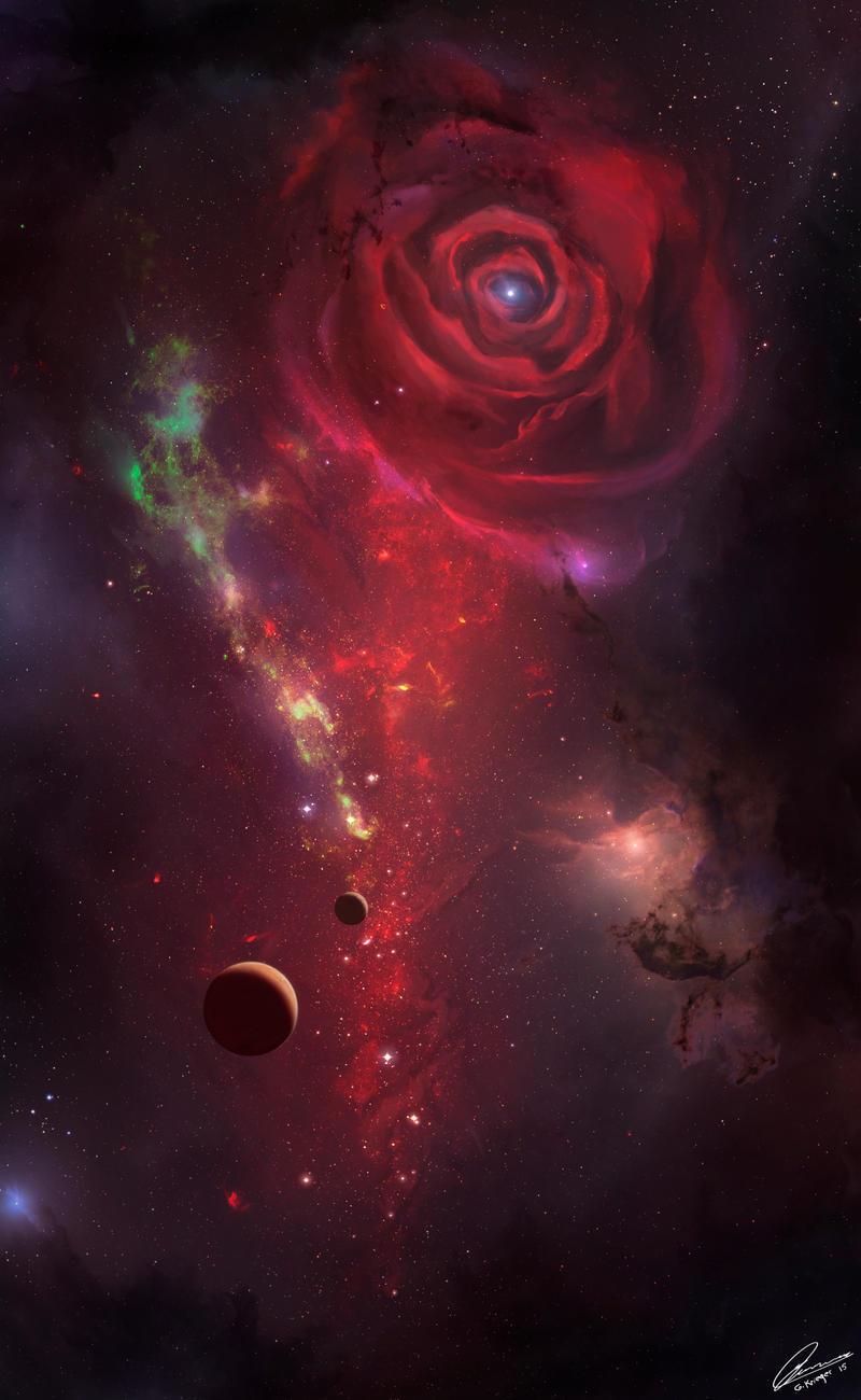 Eternal Rose FINAL jpg