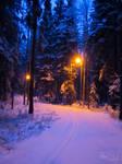 Enchanting path..