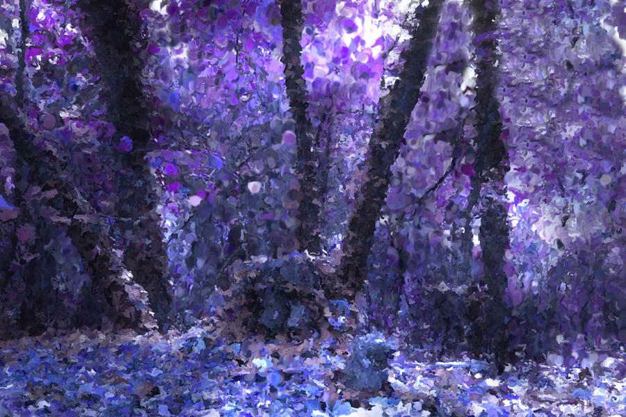 Purple Forest | Beautiful Scenery Photography