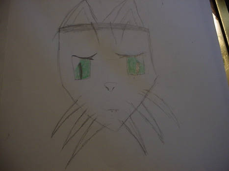 Random furry face