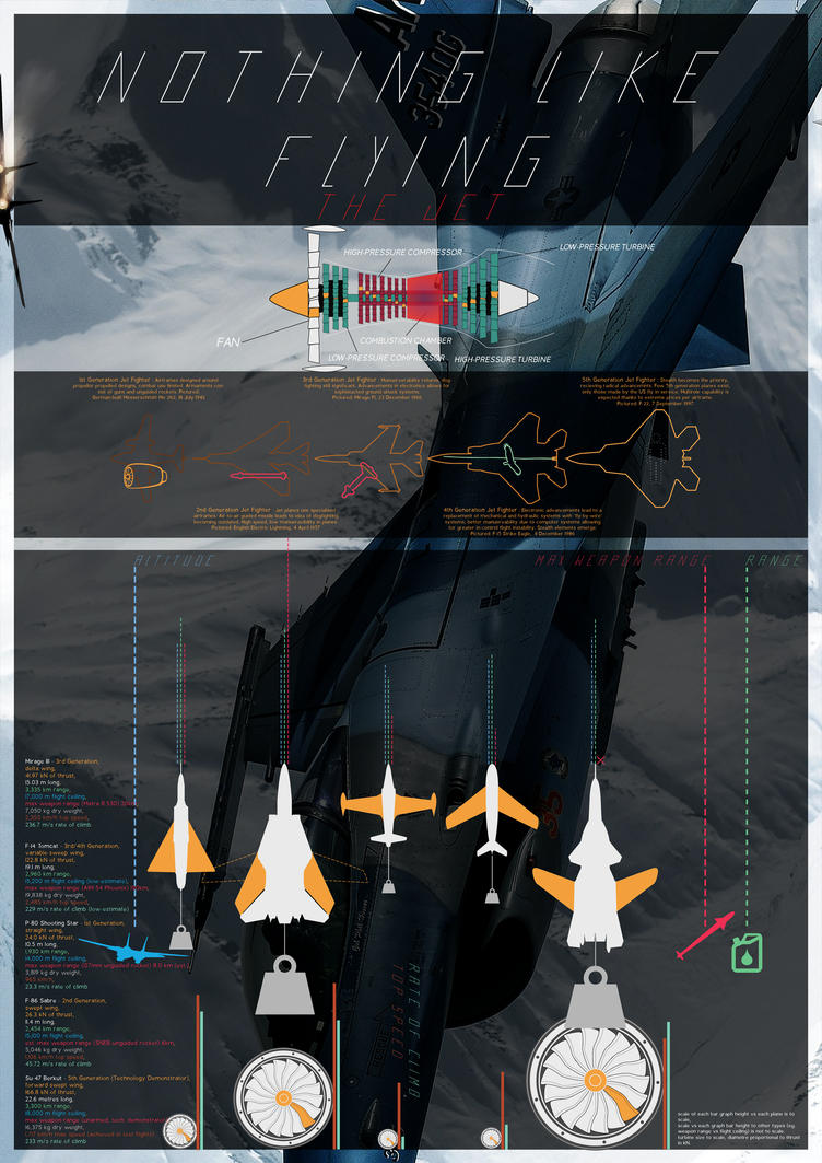 Nothing Like Flying: The Infographic by Elalition