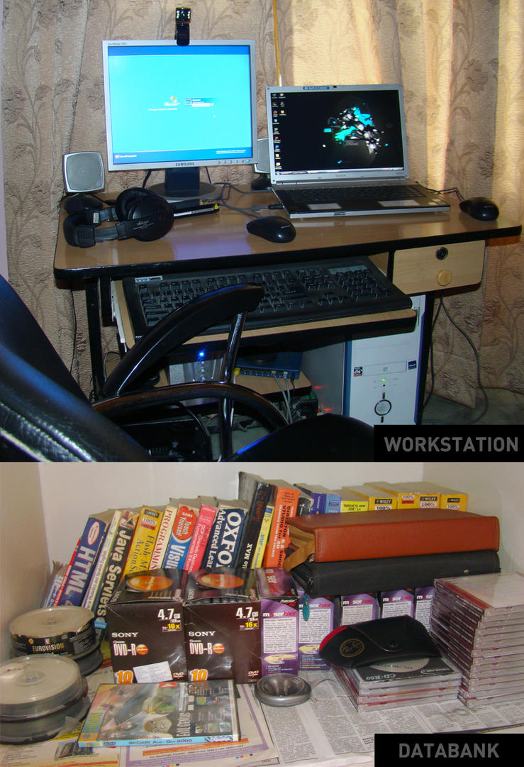 MY Workstation by princepal