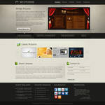Web 2.0 Company Portfolio