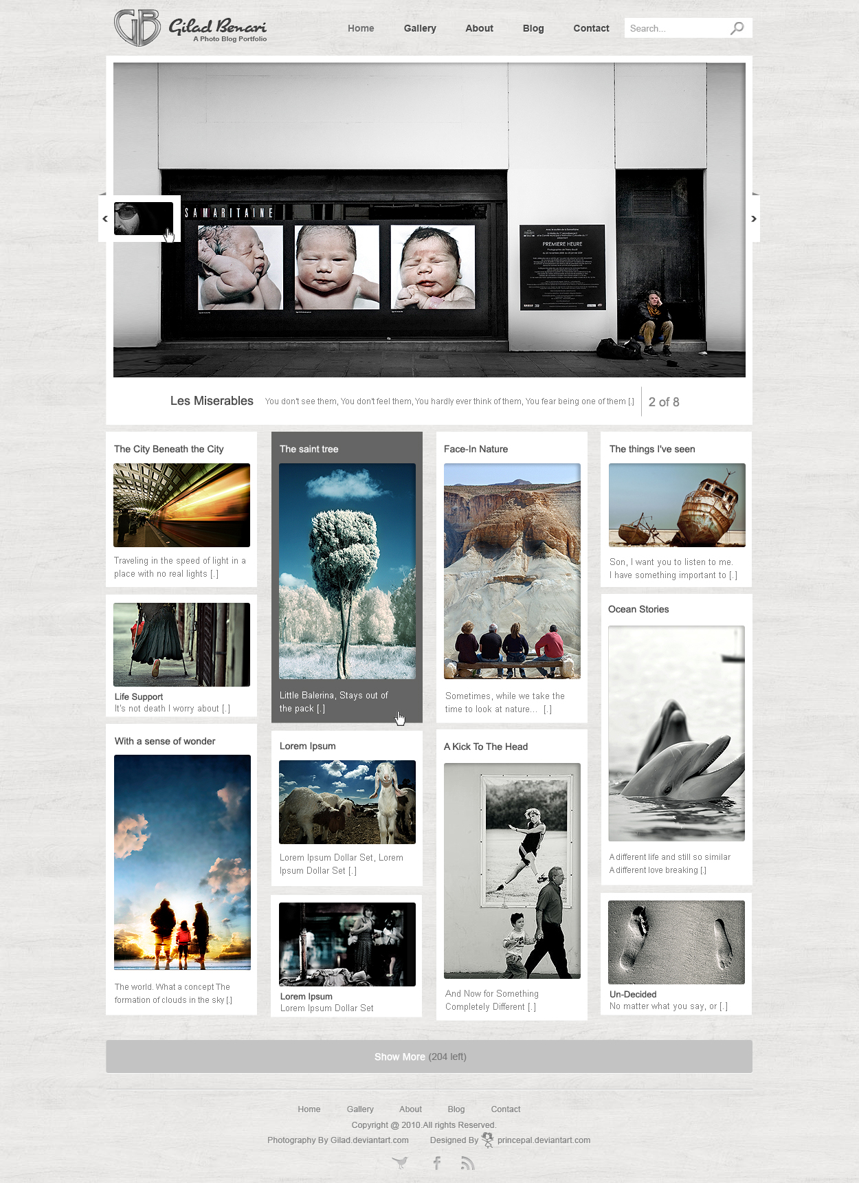 Wordpress Photo Blog Template by princepal