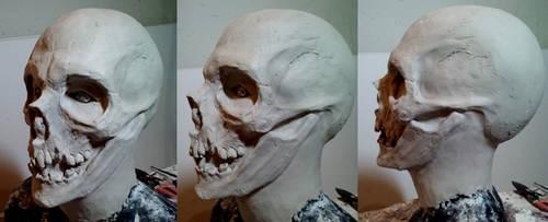 Skull1 by ChrisVennekamp