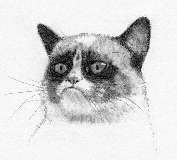 Grumpy Cat by grini on DeviantArt