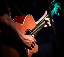 Zagreb International Blues Festival 4 by grini