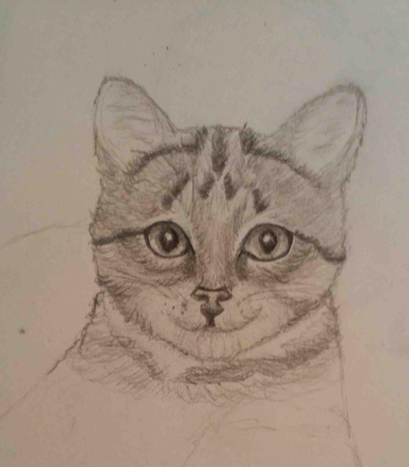 I Can't Draw Cats (wip) by GamerZzon