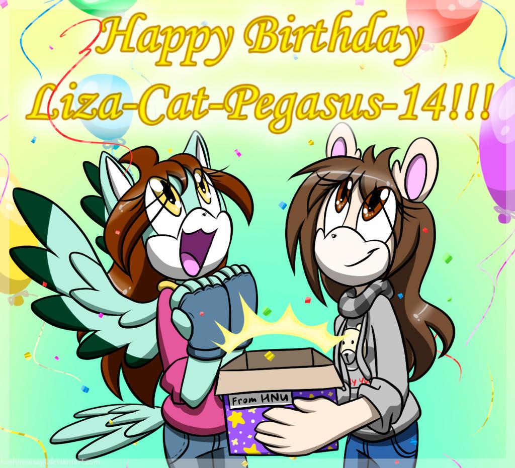 Happy Birthday Liza-Cat-Pegasus-14!!! By HoshiNoUsagi On