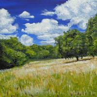 Summer Meadow by chrisjrichards