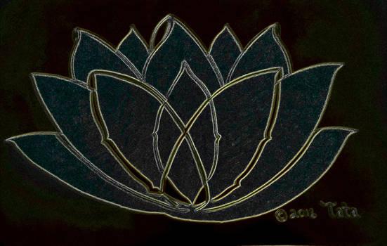 Lotus in Fairyland