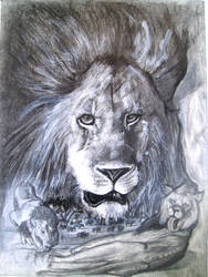 lion pencil drawing by moisessurielart
