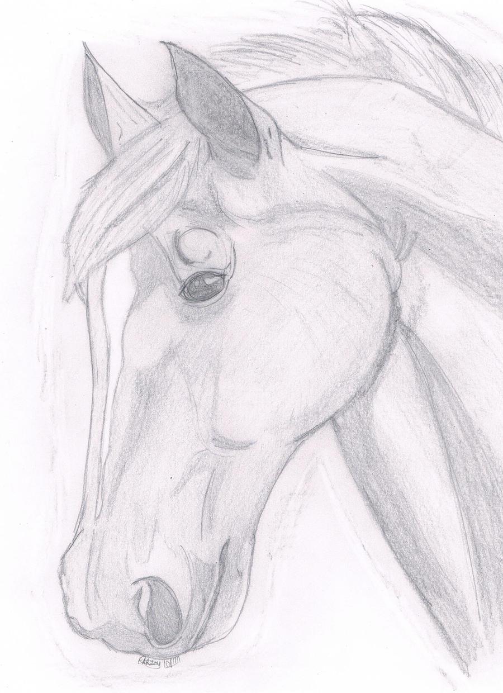 Simple Horse Head Drawings In Pencil