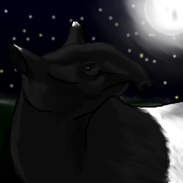 Night of the Tapir by puddlecat1