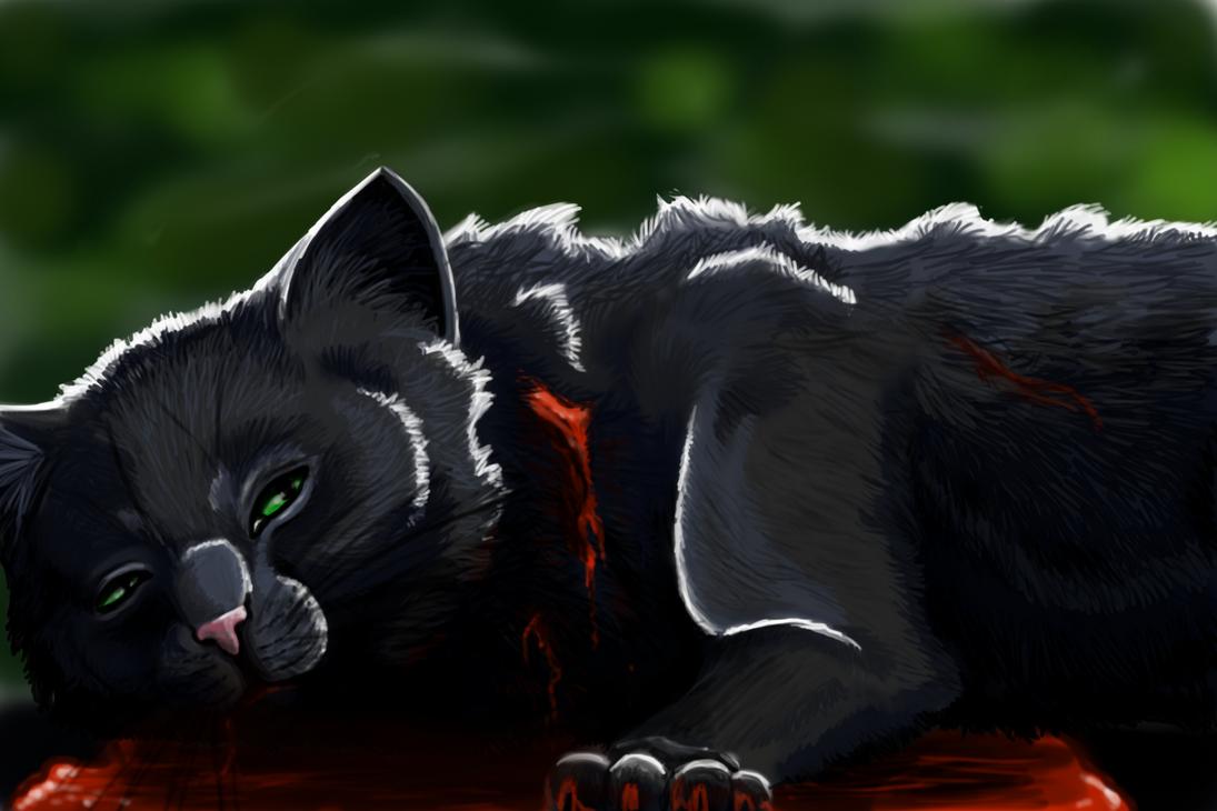 Sad Warrior Cats