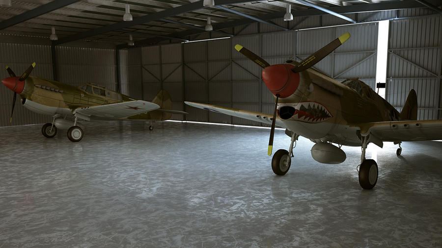 P40 WARHAWK by melkorius