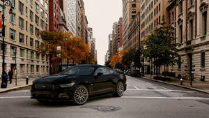 2015 Ford Mustang GT by melkorius