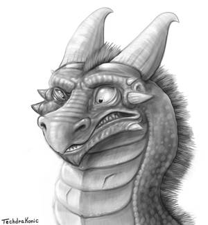 Confused Dragon