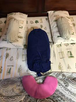 Bedface Pareidolia