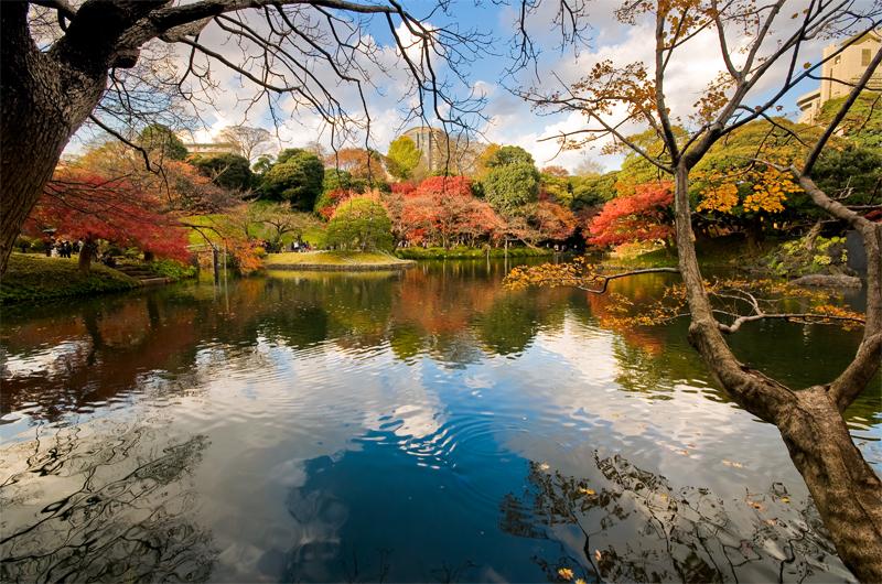 Japanese Garden by FloatGarden