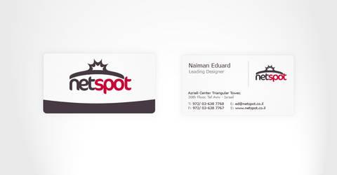 Netspot.VistCard by VoDesign
