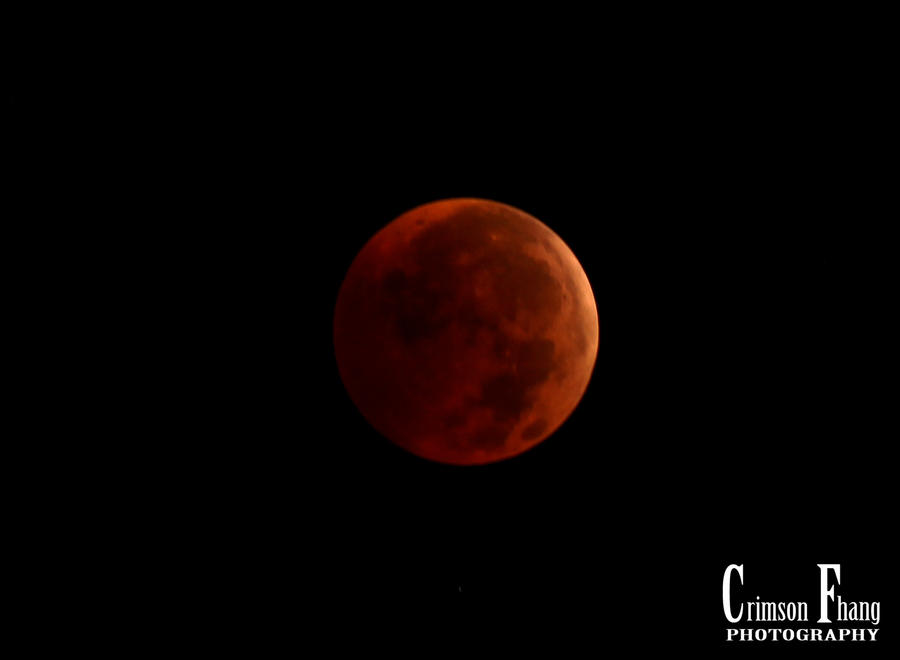 Winter Solstice Lunar Eclipse by Crimson-Fhang