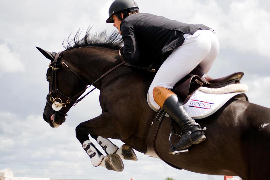 Black horses jumping - photo#19