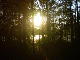 a sunset by vliu