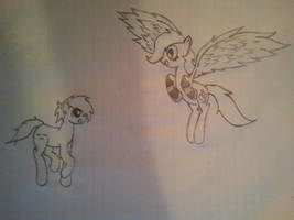 Cirra and Nyte (Ponified)