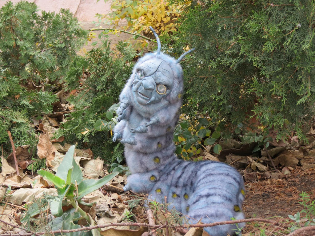 Caterpillar from Alice and Wonderland by Sukhanov on DeviantArt
