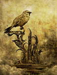 Altar of the Sparrow by Frictor