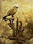 Altar of the Sparrow