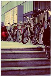 Cycles by S-e-e-D