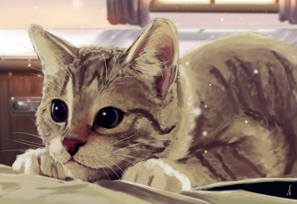 Cat by lFace2Facel