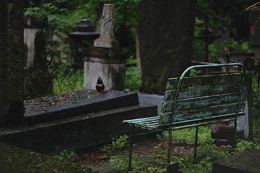 Quiet place by dammmmit