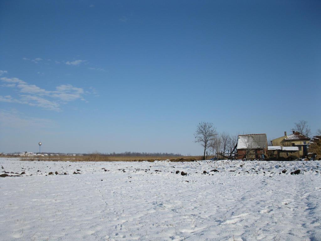 Field under snow 2 by Linden-Oak