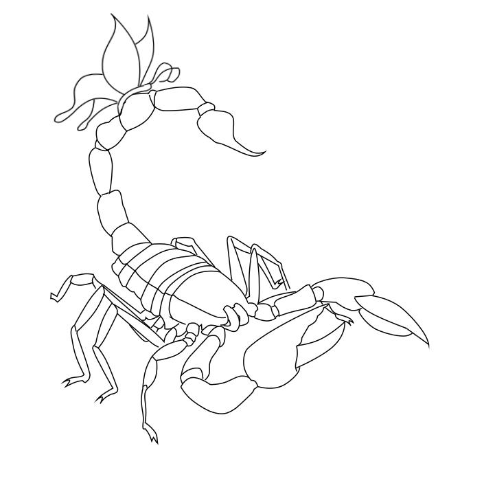 Line Drawing Tattoo Art : Scorpion tattoo line art by arisumizuki on deviantart