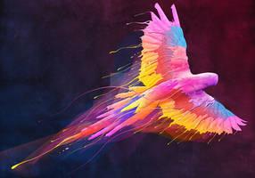 a color bird
