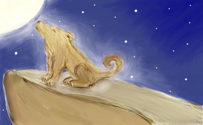 Wisdom of the Wolf by KolaWolf