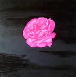 Rose in the night by darkBabette