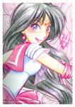 Crayola Crayon Sailor Mars