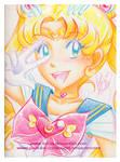 Crayola Crayon Sailor Moon
