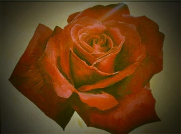 Painted Rose1.2