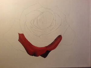 Rose (unfinished part1)