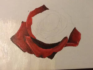Rose (unfinished part2)